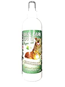 PetzLife Oral Care Spray bottle - Peppermint 12oz