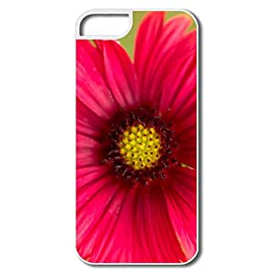 Popular Deep Heart IPhone 5/5s Case For Her