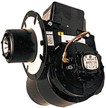 Wayne MSR-DC 12 Volt Burner Assembly for Hot Water Pressure Power Washer or Steamer by Wayne