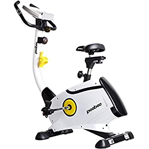 Well-Being-Matters 41u6DjiRhSL._SS300_ L NOW Exercise Bike, Indoor Cycling Bike, Belt Drive Stationary Bike, Magnetic Resistance Upright Bike With LCD Display…