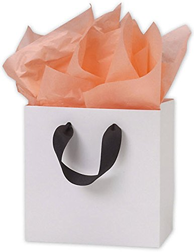 White Grosgrain Handle Matte Laminated Euro Shoppers (200 Bags) - BOWS-244M-060306-9GR by Miller Supply Inc