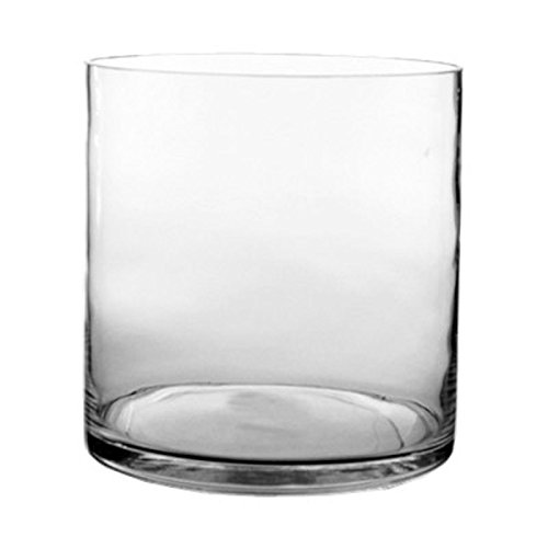 CYS Glass Cylinder Jumbo Vase. H-12