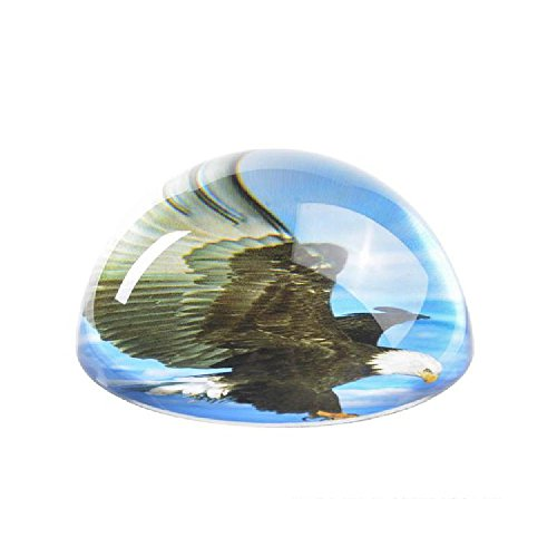 Bargain World 80 Mm Dome Paperweight Eagle (With Sticky Notes)