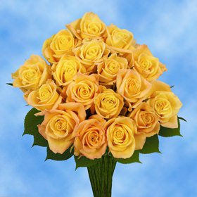 GlobalRose 50 Fresh Cut Yellow Roses - Fresh Flowers Express Delivery - Perfect for Birthday or Anniversary.