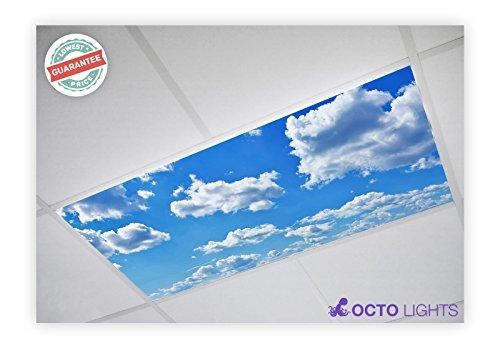(Cloud 001 2x4 Flexible Fluorescent Light Cover)