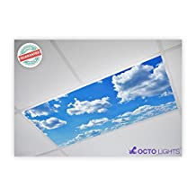 Cloud 001 2x4 Flexible Fluorescent Light Cover