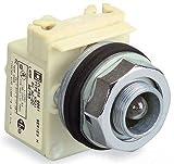 SCHNEIDER ELECTRIC 9001KP35LG Pilot Light 28V 30Mm Type K Options Electrical Box