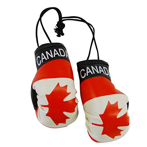 Buy boxing gloves to buy