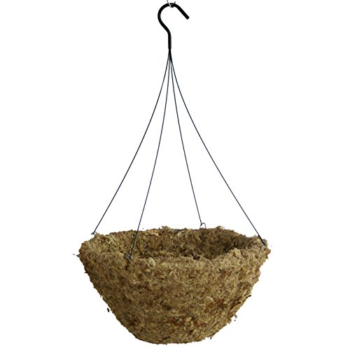 Gardener Select Sphagnum Moss Hang Basket with Hanger, 16-Inch (Sphagnum Basket Moss)