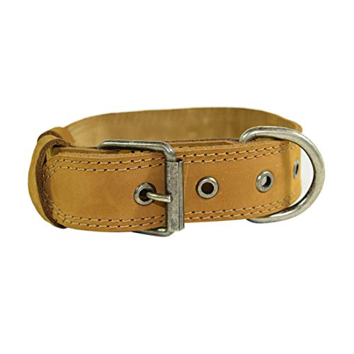 Hide & Drink, Thick Leather Dog Collar for Small Size Dog / (1.25 in.) Wide (12 to 16 Inches) Handmade :: Old Tobacco
