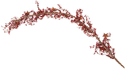 CWI Gifts Pip Berry and Star Garland, 40-Inch, ()