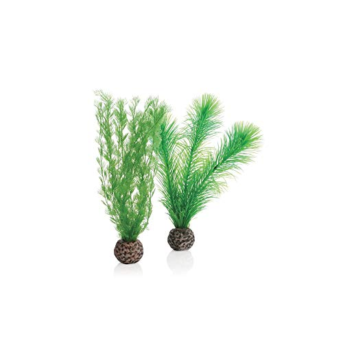 Image of biOrb 46083.0 Feather Fern Set Small Green Aquariums