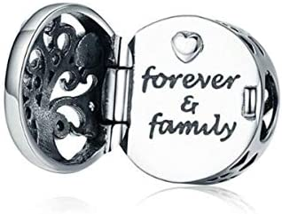Love Mom Dad Baby Girl Boy Family Charms For Pandora Bracelets Letter Forever Family Amazon Ae