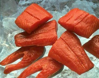 Each Fillet Individually Vacuum - 5 pounds Taku River King Salmon Fillets
