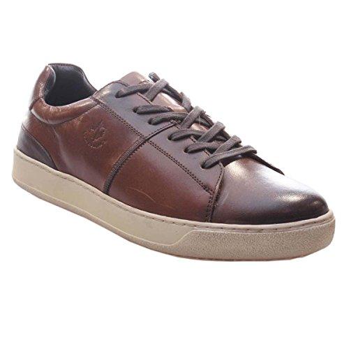 Basses Homme Blazer Lumberjack Sneakers Brun nvTZq4x