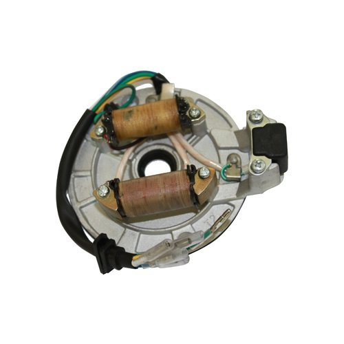 2-Coil Magneto Stator for 50cc-125cc Kick Start ATV,Dirt Bike,Go Kart,Pit Bike,Dune Buggy