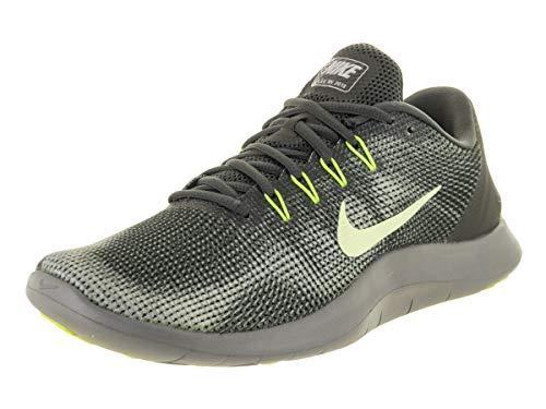 Scarpe Nike Uomo Running 2018 Run Flex Herren Laufschuh Anthracite xqATXp