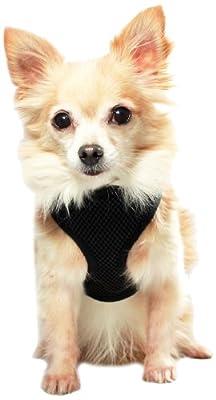 Anit Accessories Basic Mesh Harness, Medium, Black