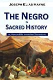 img - for The Negro in Sacred History, or, Ham and His Immediate Descendants book / textbook / text book