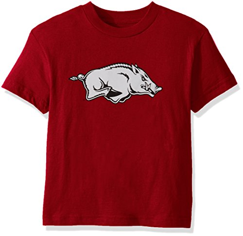 NCAA Boys Arkansas Razorbacks Primary Logo Tee, Large (7), Victory (Arkansas Razorbacks Logos)