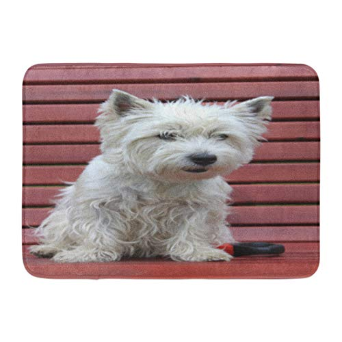 Emvency Bath Mat Canine Green Animal West Highland White Terrier Westie Dog on Wooden Bench Outdoors in Park Breed Cute Bathroom Decor Rug 16