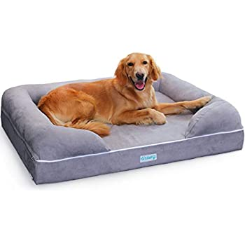 Amazon.com : Orthopedic Dog Bed Lounge Sofa Removable