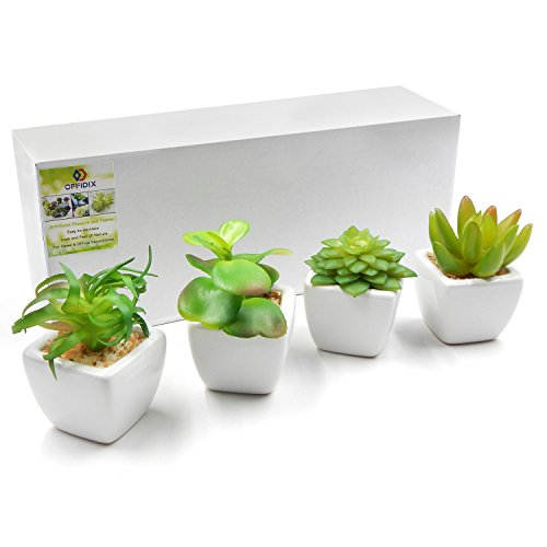 OFFIDIX Set of 4 Mini Assorted Green Artificial Succulent Plants in Square White Ceramic Pots Faux Potted Plant for Home Bath Office Shelf Decoration