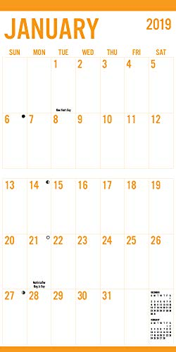 Avalon 2019 Wall Calendar, Large Print-Basic, 12 x 12 inches (82389) by Avalon (Image #1)
