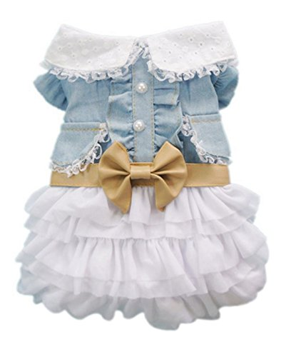 HP95 TM Small Size Dog Dress,Summer Dog Cute Skirt with Dotted Tassel Pet Clothes (M, Blue)