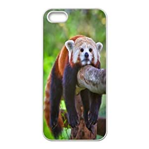 [Beautiful Panda] Red Panda Cub Case For HTC One M8 Cover {White}