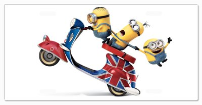 (STUART KEVIN AND BOB MINIONS Lets Ride Vanity License Plate)
