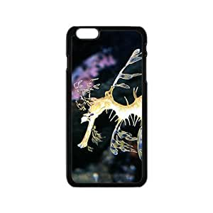 The Beautiful Syngnathus Hight Quality Plastic Case for Iphone 6