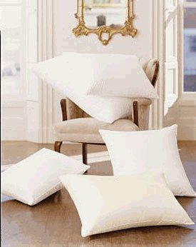 Pacific Coast Touch Of Down Queen Pillow Set  2 Queen Pillows    Featured In Many Hilton Hotels