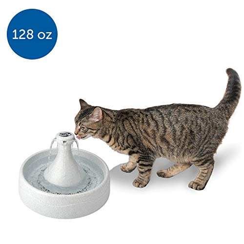 PetSafe Drinkwell 360 Cat