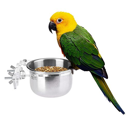 Pet Bird Food Feeding and Drinking Hanging Cup Stainless Steel Coop Hanger Cup For Parrot Cage Budgie