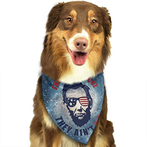 (They Hate U.s Cuz They Ain't U.s Triangle Bandana Scarves Accessories for Pet Cats and Dogs -)