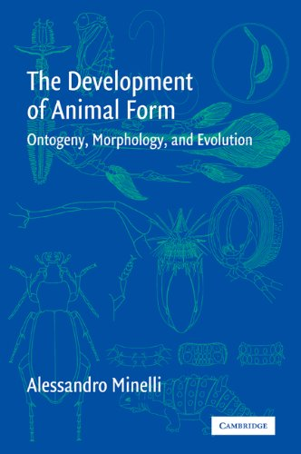 The Development of Animal Form: Ontogeny, Morphology, and Evolution