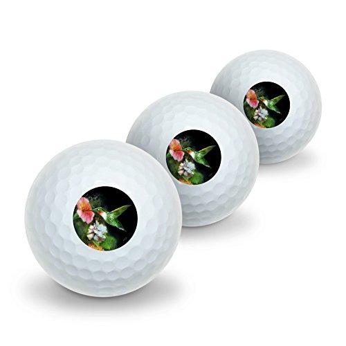 Golf Hummingbird (Graphics and More Ruby's Hummingbird Flower Garden Novelty Golf Balls 3 Pack)