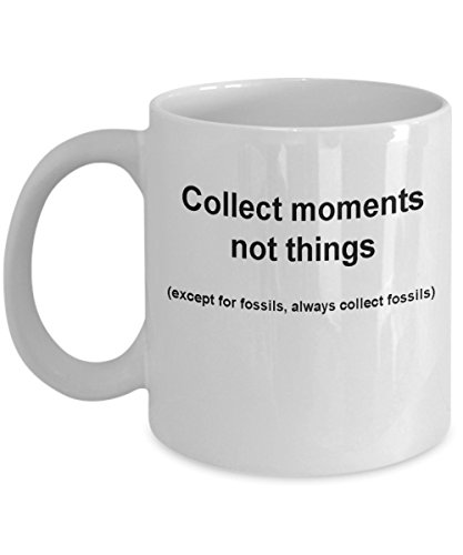 Fossils collectors mug -Collect moments not things -Funny Christmas Gifts - Porcelain Coffee Mug Cute Cool Ceramic Cup Black, Best Office Tea Mug & ()