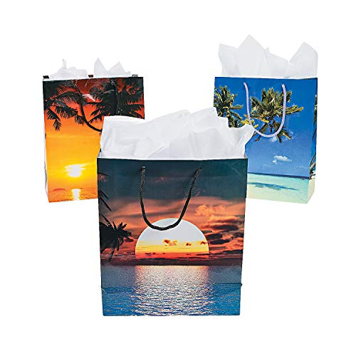 Fun Express Medium Sand & Sun Gift Bags | 12 Count | Great for Luau or Summer Themed Event, Hawaiian Birthday Party, Beach Wedding Favor]()