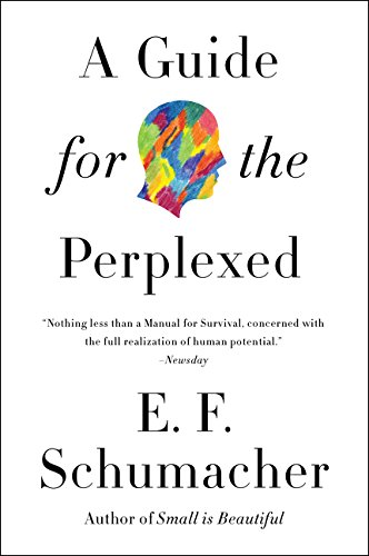 A Guide for the Perplexed (Harper Perennial Modern Thought)