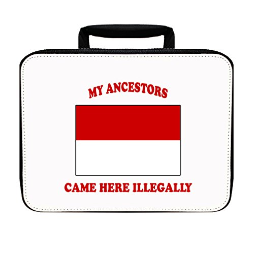 Indonesia Ancestors Came Illegally Insulated Lunch Box Bag by Style in Print