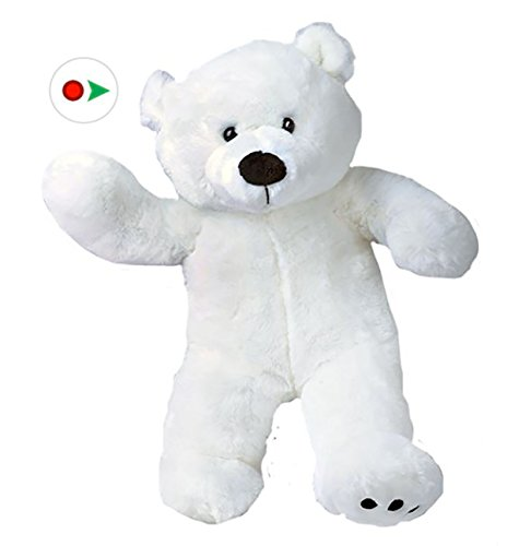 Stuffems Toy Shop Record Your Own Plush 8 inch White Polar Bear - Ready 2 Love in a Few Easy Steps ()