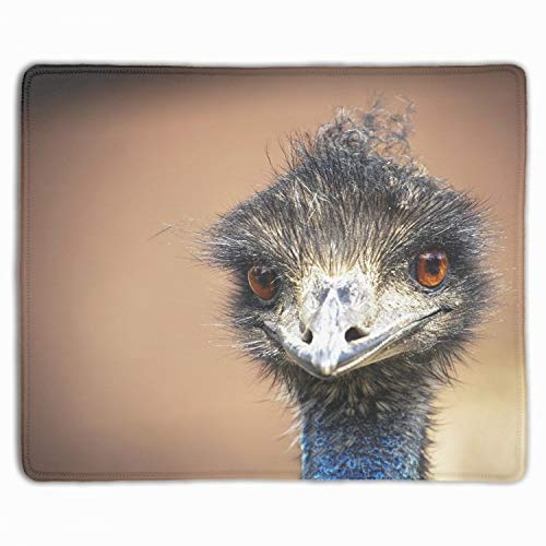 - Mouse Pad Animal Emu Birds Customized Non-Slip Rubber Mousepad Gaming Mouse Pad - 11.8' X 9.85'