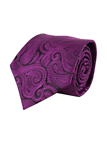 Men's Plum Paisley 100% Microfiber Poly Woven Wedding Neck Tie - Woven Plum