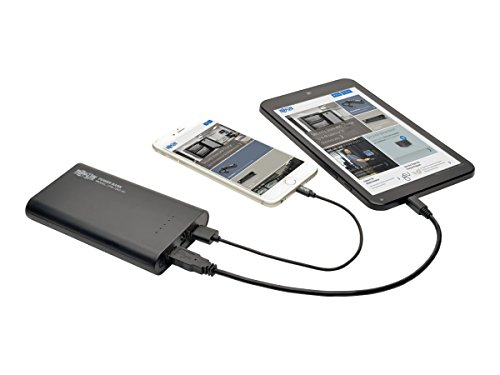TRIPP LITE Portable 12,000mAh Mobile Power Bank USB Battery Charger, Dual Port (UPB-12K0-2U)