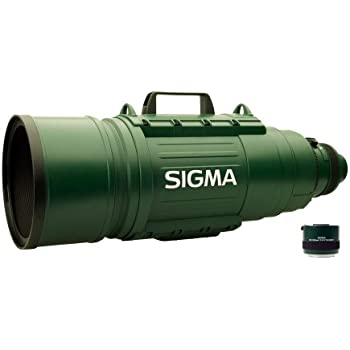 Sigma 200-500mm f/2.8 APO EX DG Ultra-Telephoto Zoom Lens for Canon DSLR Cameras
