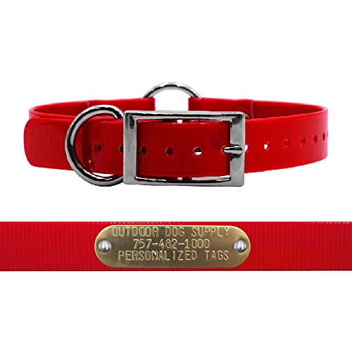 "Outdoor Dog Supply 1"" Wide Solid Ring in Center Dog Collar Strap with Custom Brass Name Plate (21"" Long, Red)"