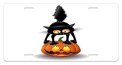Ambesonne Halloween License Plate, Black Cat on Pumpkin Drawing Spooky Cartoon Characters Halloween Humor Art, High Gloss Aluminum Novelty Plate, 5.88