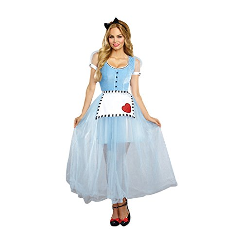 [Dreamgirl Women's Alice Costume, Blue/White, Small] (Characters Of Alice In Wonderland Costumes)